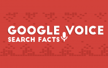 google voice search facts